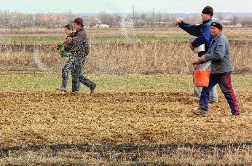 FAO and EBRD plan to finance Ukrainian agricultural firms